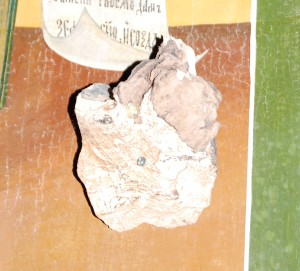 Частица Мамврийского дуба в иконе праотца Авраама